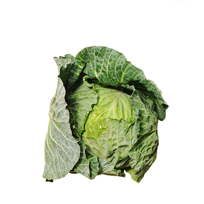 FRESH GREEN CABBAGE ( BAXTER ) 10kg