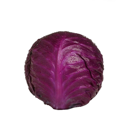 LARGE FRESH RED CABBAGE 9/10  25kg
